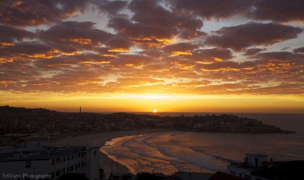 cropped-bondi-sunrise-may-30th-logo.jpg