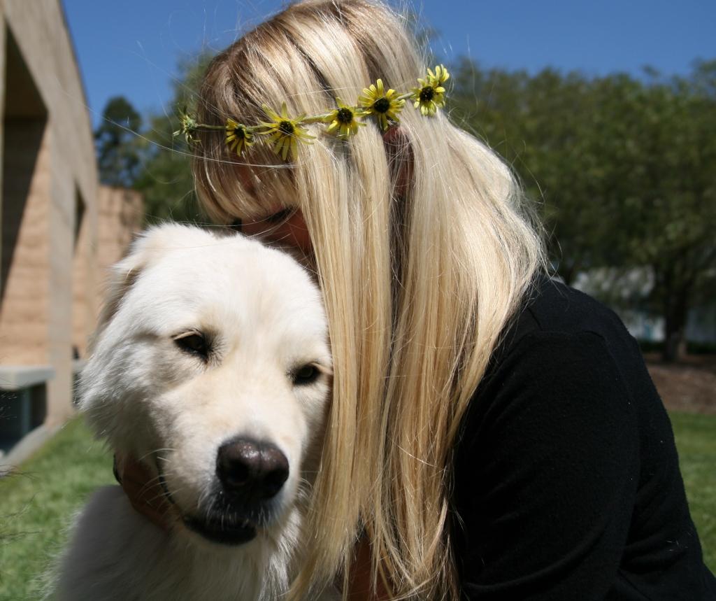 Dog photography hug